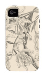 Orchid on Khaki II iPhone 4/4S Case by Samuel Curtis