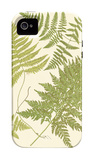 Ferns with Platemark VI iPhone 4/4S Case