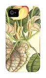 Botanical Fantasy III iPhone 4/4S Case