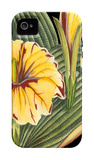 Tropical Plant on Black III iPhone 4/4S Case