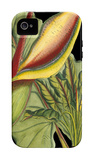 Tropical Plant on Black II iPhone 4/4S Case