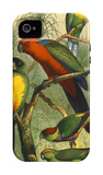 Tropical Birds II iPhone 4/4S Case by Cassel