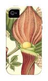 Botanical Fantasy I iPhone 4/4S Case