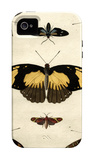 Butterfly Melage IV iPhone 4/4S Case