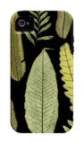 Dramatic Fern II iPhone 4/4S Case