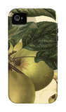 Apple Harvest I iPhone 4/4S Case