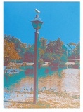 Seagull on a Lantern Limited Edition by Max Epstein
