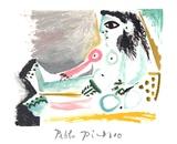 Femme Nu Assise Impressões colecionáveis por Pablo Picasso