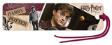 Harry Potter and the Deathly Hallows Part I Movie Harry Potter Bookmark Bookmark