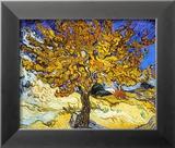 Mulberry Tree, ca. 1889 Poster af Vincent van Gogh