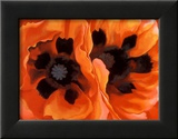 Oriental Poppies Pósters por Georgia O'Keeffe