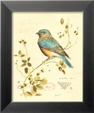 Gilded Songbird IV Posters by Chad Barrett