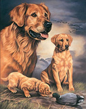 Joanne Graham Golden Experience Retriever Dogs with Duck Tin Sign