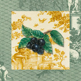 Toiles Plums Posters