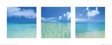 Tropisk oändlighet, triptyk Affischer