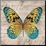 Butterflies I Mounted Print by Tandi Venter