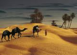 Palmeraie Dans le Sud Tunisien Kunstdruck von Robert Putinier