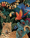 Rainforest Prints by Ken Joudrey