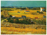 Harvest at Arles Art by Vincent van Gogh
