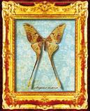 Butterflies I Poster
