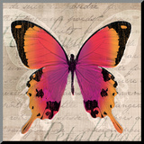 Butterflies III Mounted Print by Tandi Venter