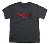 Youth: The Dark Knight Rises - Fear Logo Shirts