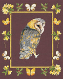 Nice Animals Owl Poster
