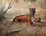 Strength & Fierceness (Tiger) Prints