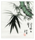 Bamboo Detail Kunstdruck