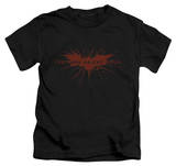 Youth: The Dark Knight Rises - Distressed Bat T-shirts