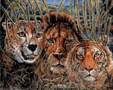 African Wildlife (Big Cats) Kunstdruck