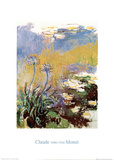 Les Agapanthes Posters by Claude Monet