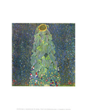 The Sunflower, c.1906-1907 Prints by Gustav Klimt