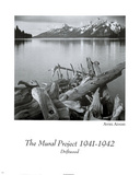 Driftwood Print by Ansel Adams