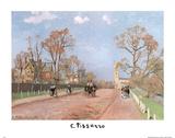 The Avenue, Sydenham Camille Pissarro Print