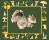 Nice Animals Squirrels Print