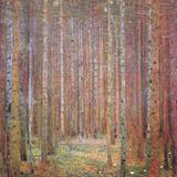 Tannenwald I Poster von Gustav Klimt