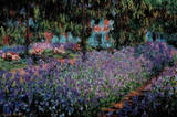 The Artist's Garden at Giverny Poster von Claude Monet