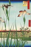 Irises at Horikiri Kunstdrucke von Ando Hiroshige