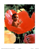 Baby In Flower I Kunstdruck