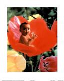 Baby In Flower I - Resim