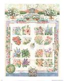 Flower Garden (Varied Plants) Fotografia