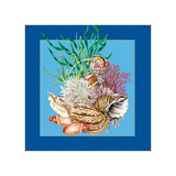 Fishes & Shells III Prints