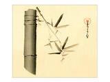 Bamboo Sepia Detail Print