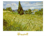 Oat Field with Cypress Posters by Vincent van Gogh