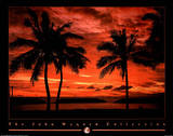 Hawaiian Sunset (On Ocean Beach no.  5) Posters