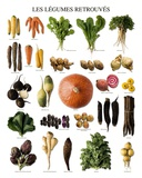 Vegetables of Yesteryears Posters