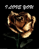 I Love You (Rose) Prints