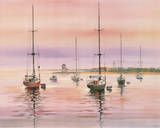 Early Morning (Sailboats) Posters