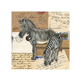 Africa Zebras Posters